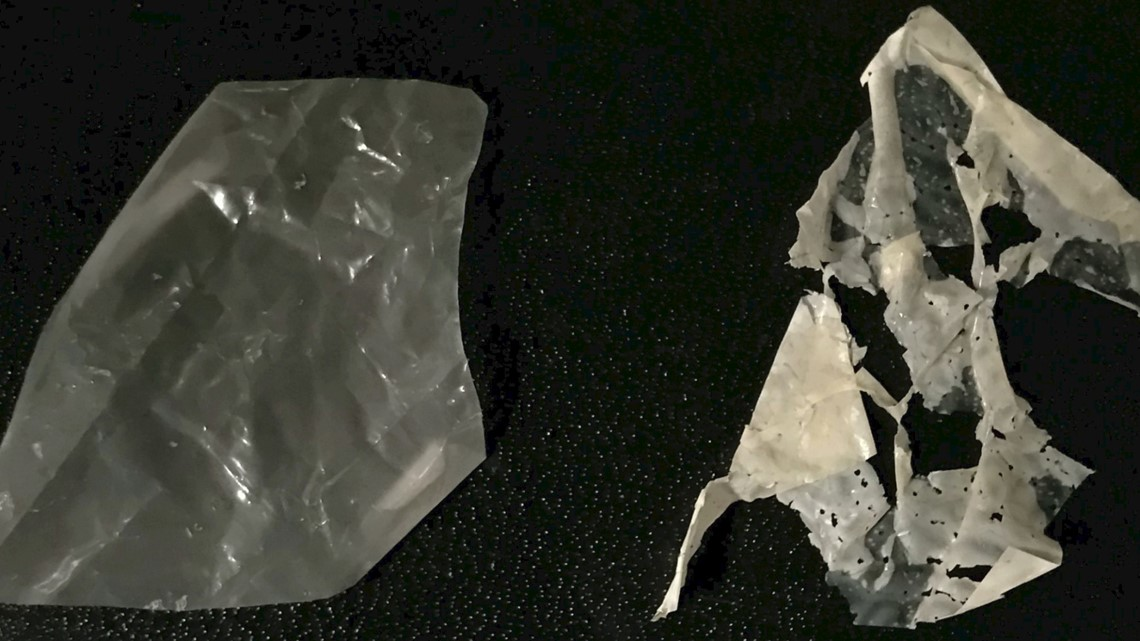 This Newly Developed Plastic Can 'Eat' Itself After A Couple of Days In Warm Water