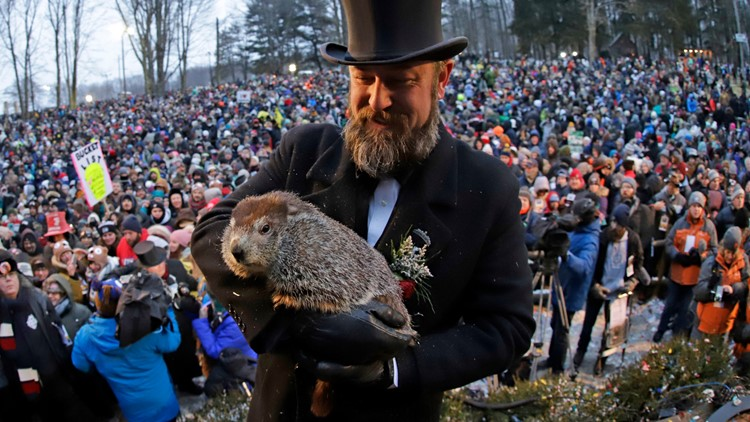 Punxsutawney Phil will do Groundhog Day prediction without ...