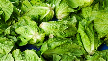 More than 100 sickened by latest romaine lettuce E. coli outbreak, including 12 in Ohio