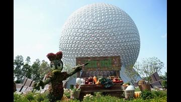 Disney World tour buses collide, injuring 15 passengers