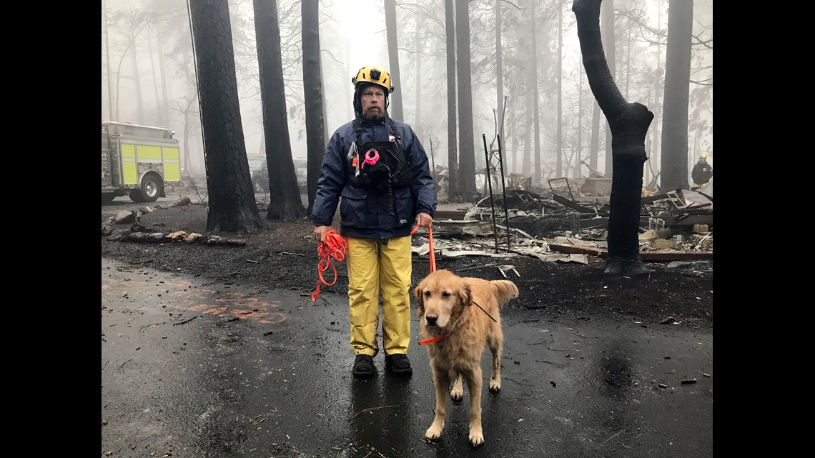 f164d5d52fbc0 Eric Darling and his dog Wyatt are part of a search team from Orange County  in Southern California who are among several teams conducting a second  search of ...