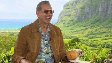 This interview with Jeff Goldblum is bonkers, in the best possible way