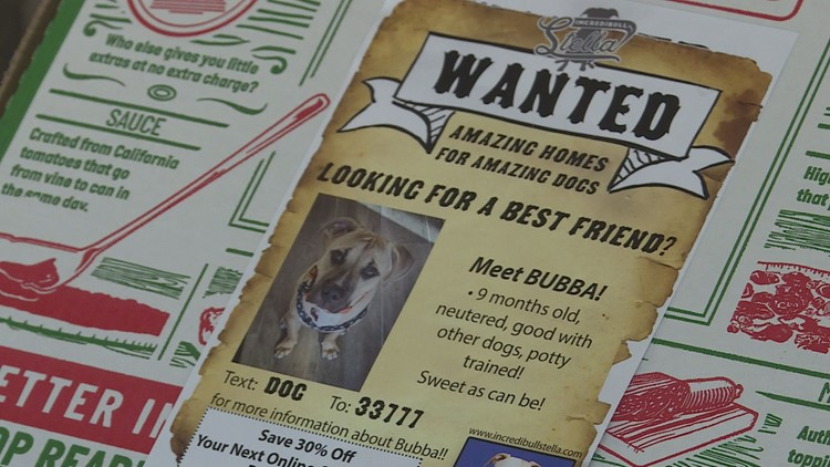Shelter dogs getting attention on pizza boxes in Arizona