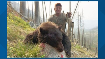 South Dakota man loses hunting privileges for wasting meat of bear he killed in Colorado