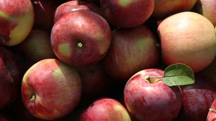 According to Aldi, the apples were sold in Georgia, Indiana, Kentucky, Ohio, South Carolina and North Carolina beginning on December 13.