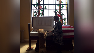 'They bonded; they belonged together' | Dog leans over casket to tell 'Daddy' goodbye