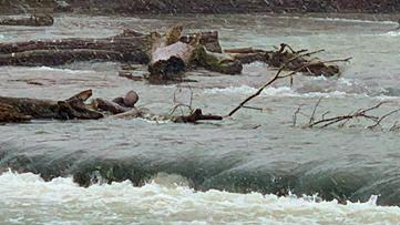 Man found clinging to log near Niagara Falls rescued