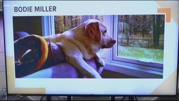 Doggone Weather: Bodie Miller