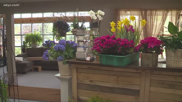 Flower shortage: How it may impact Mother's Day