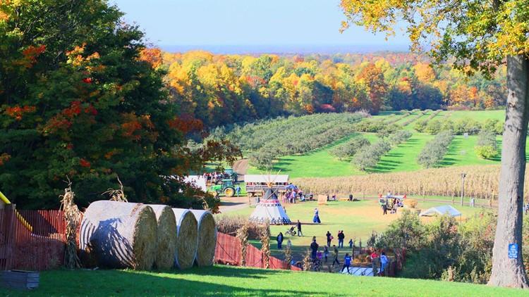 Mapleside Farms' Pumpkin Village in Brunswick is set to open for fall season