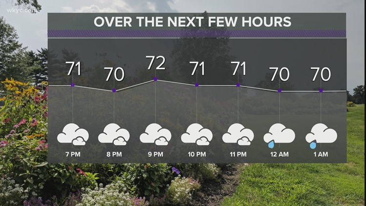 FORECAST | Heavy rain, wind, storms possible
