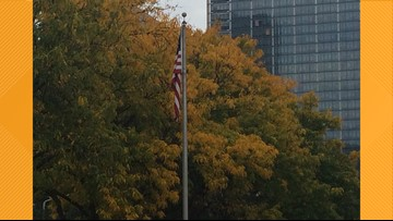 City of Cleveland commits $10 million over 10 years to plant new trees
