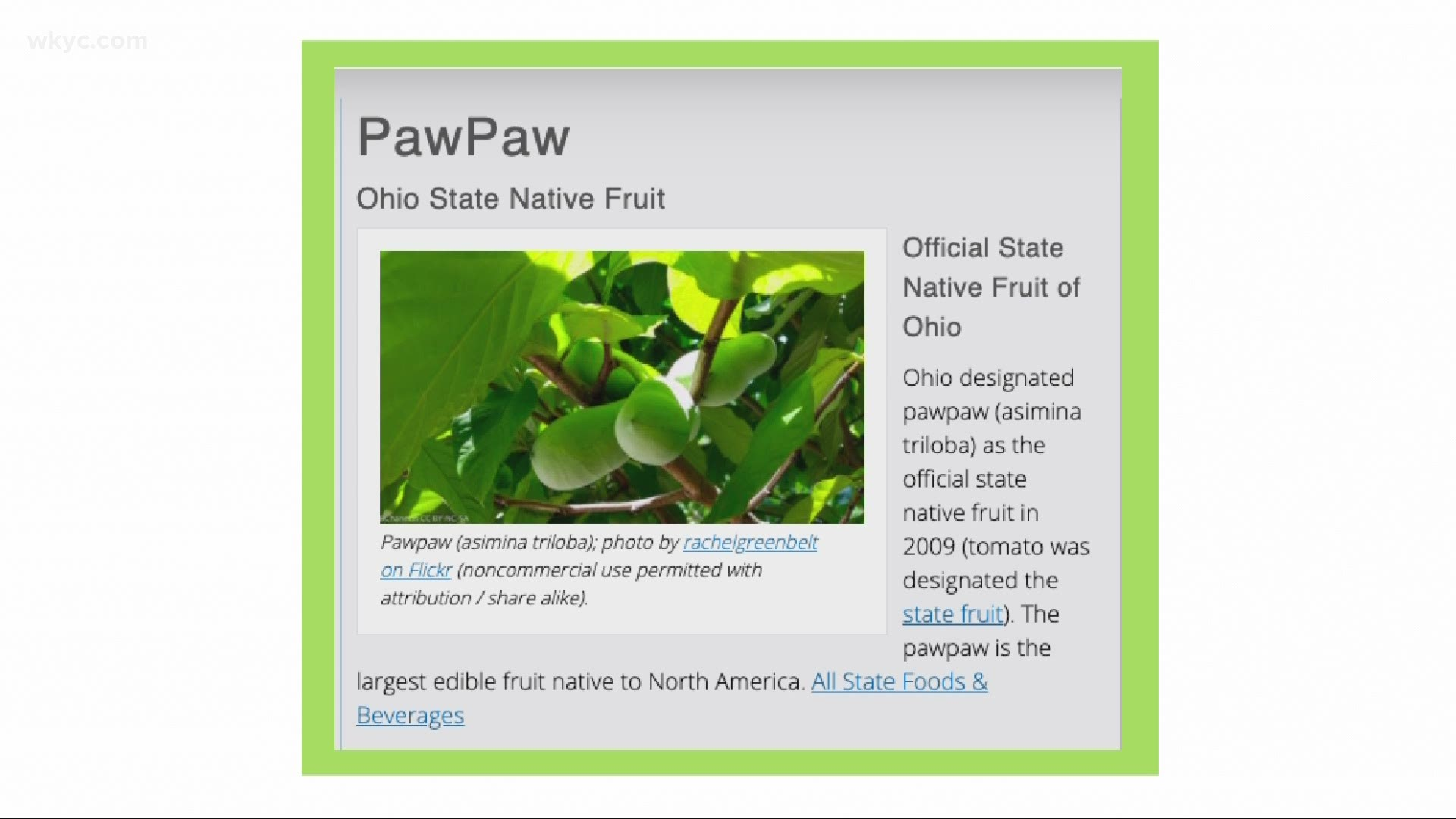 Meet The Pawpaw Ohio S Official Native Fruit Wkyc Com Check out new themes, send gifs, find every photo you've ever. get to know ohio s indigenous fruit pawpaw