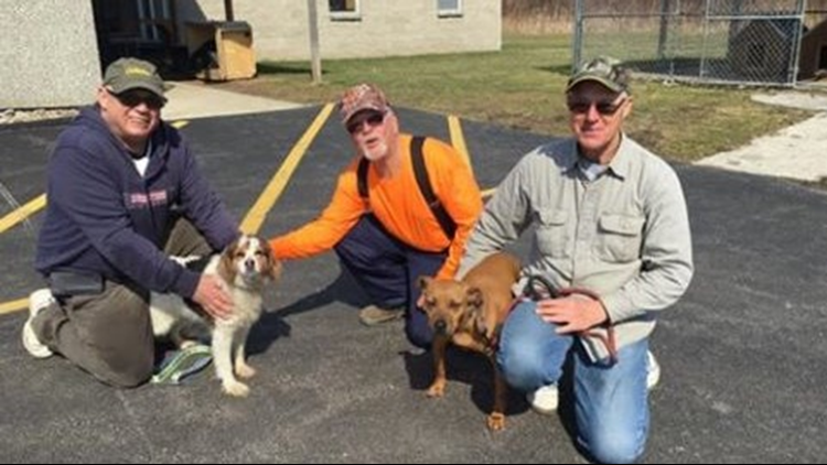 Ashtabula County dog rescued after falling off of dock
