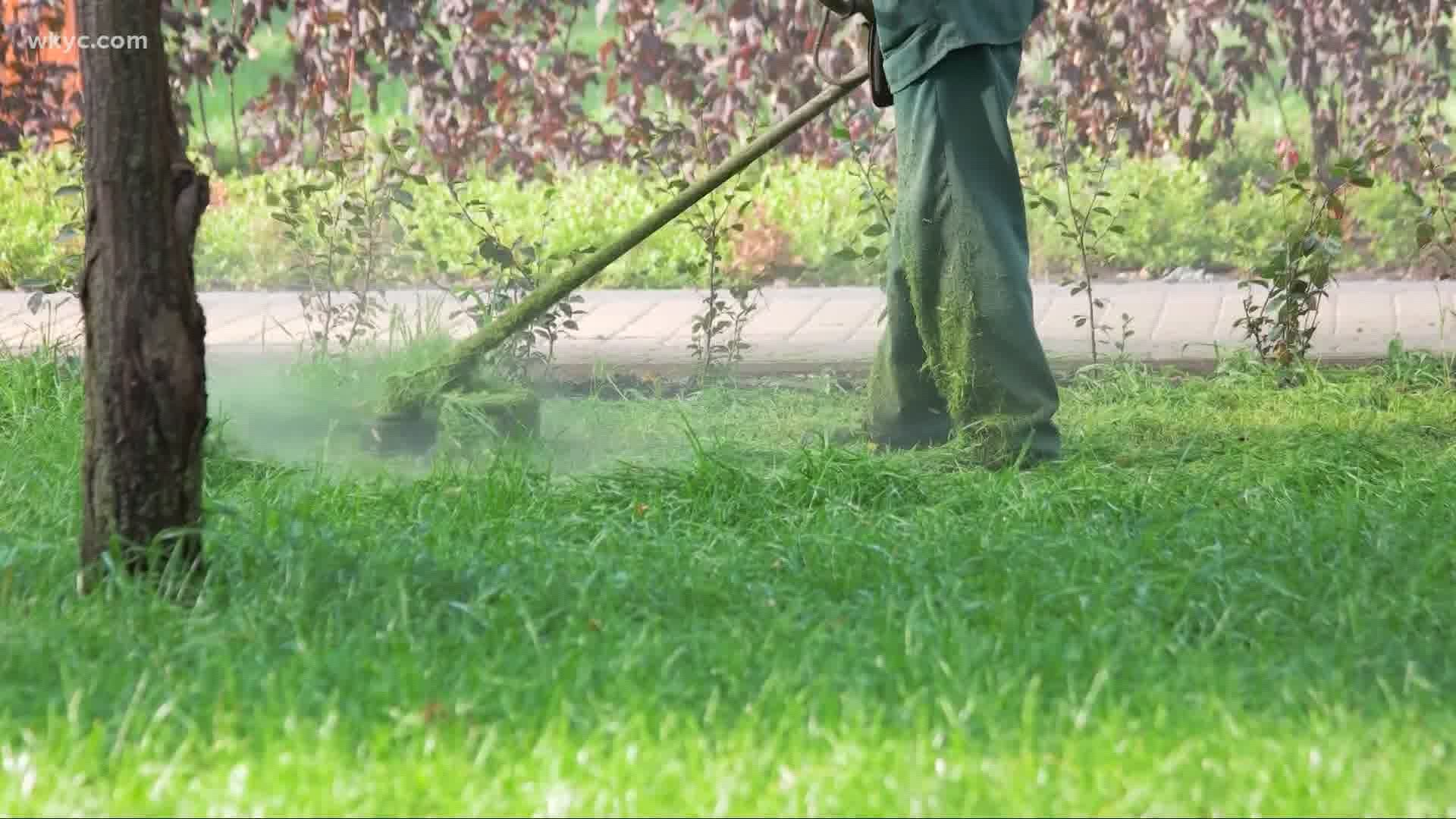 Local Company Provides Free Lawn Care For Front Line Workers Wkyc Com