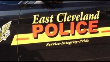 Stray dog put down after being set on fire in East Cleveland