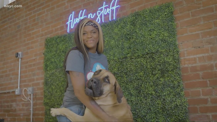Young entrepreneur finds her niche in