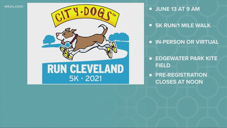 Friends of CITY DOGS Cleveland Run and Walk Downtown This Weekend