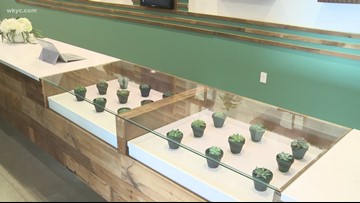 Ohio's first medical marijuana dispensaries ready to open