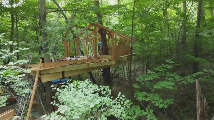 'Tree House Masters' help construct classroom in the trees at Ohio Bird Sanctuary in Mansfield