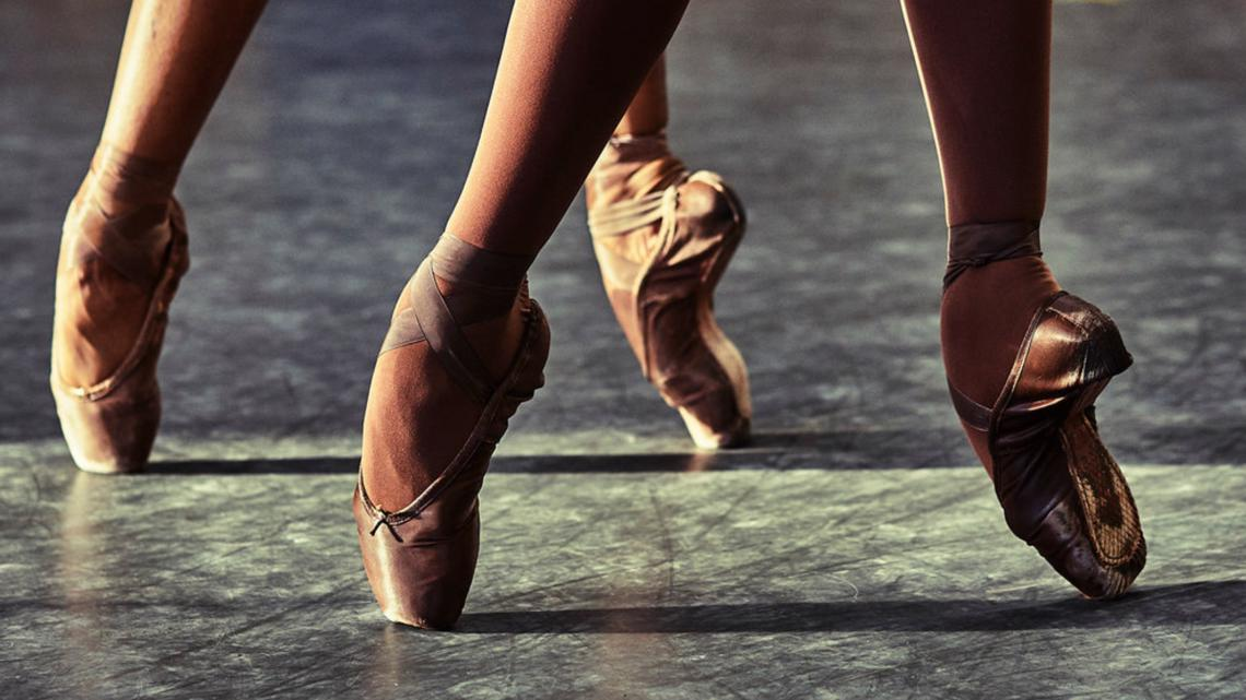 Flesh Colored Pointe Shoes