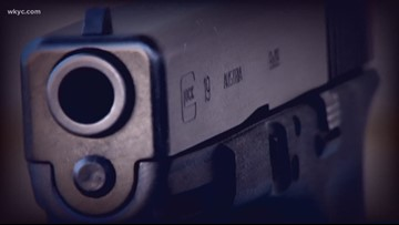Ohio gun safety group plans to revise background check petition