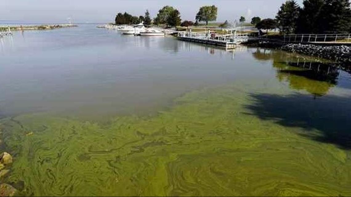 Ohio Gov. Mike DeWine promises funding to fight Lake Erie algae