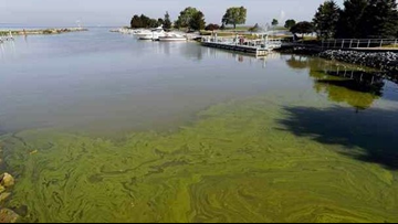 Lawsuit seeks action on Lake Erie algae cleanup