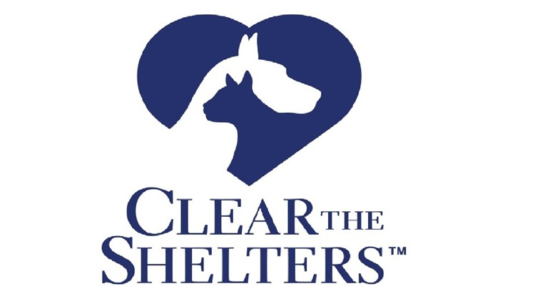 Save the date! WKYC helps to 'Clear the Shelters' on Aug. 17