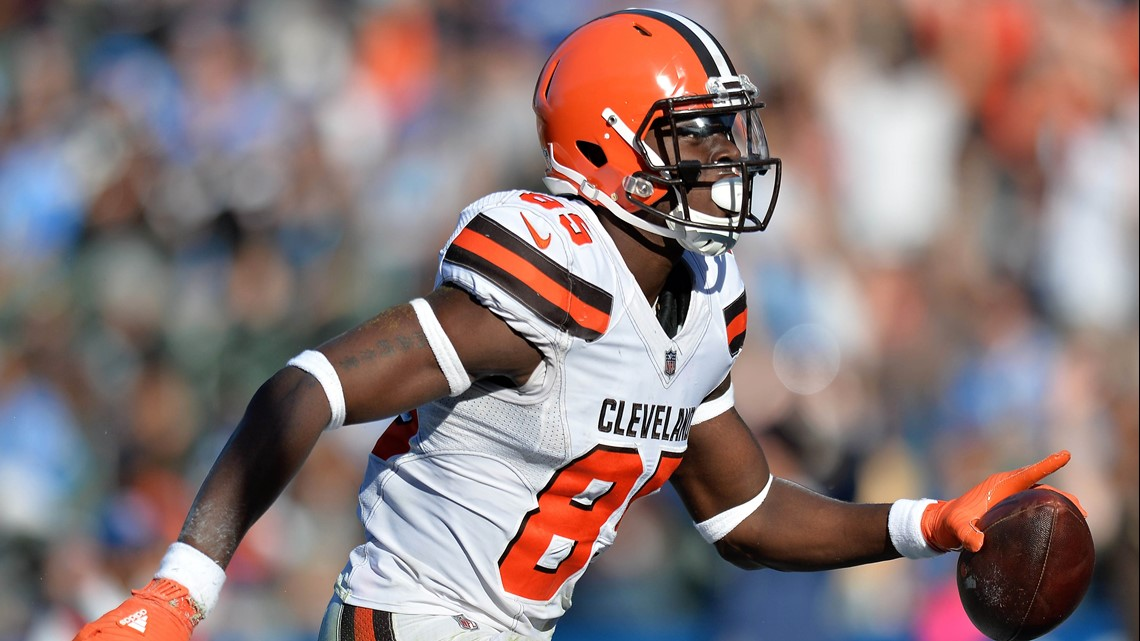 Image result for david njoku