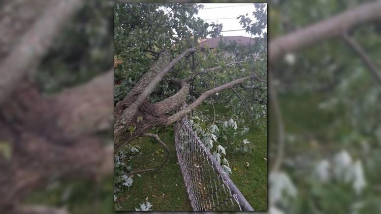 Storm damage 2_1540135933925.png.jpg