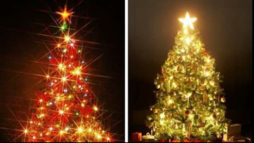 VOTE NOW   Do you prefer white holiday lights or colored ones?