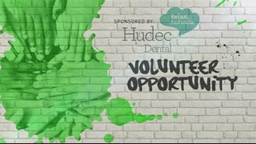 Volunteer Opportunity 11.16.18