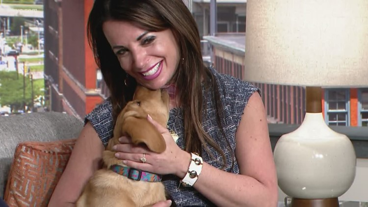 Roxy steals the show with puppy kisses for Hollie Strano
