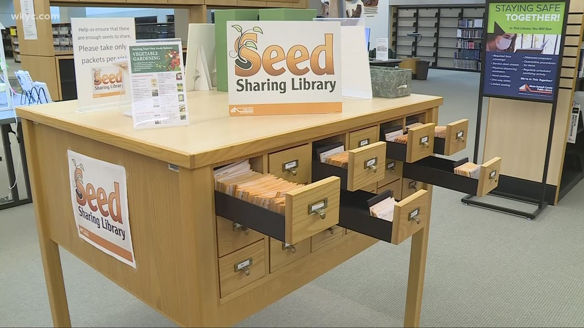 Library systems lending more than books