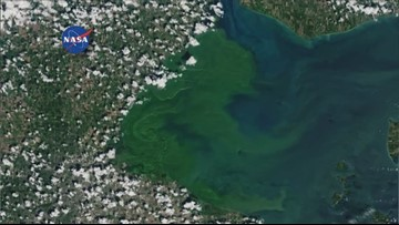 Bay Village Police: Columbia Road Beach closed due to toxic algal blooms