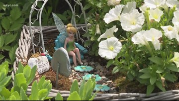 Fairy gardening: Summer trend is magical escape for adults