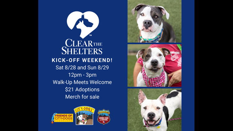 Cleveland City Kennel reducing adoption fees this weekend: Clear the Shelters