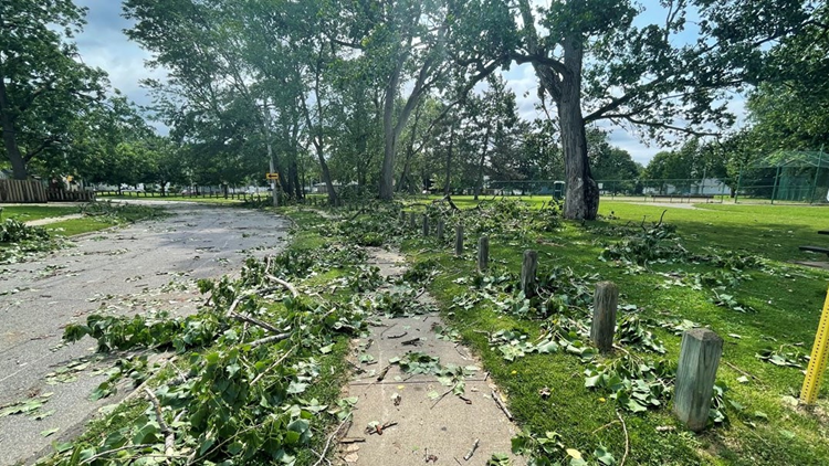 Severe weather causes downed trees, power outages throughout Northeast Ohio