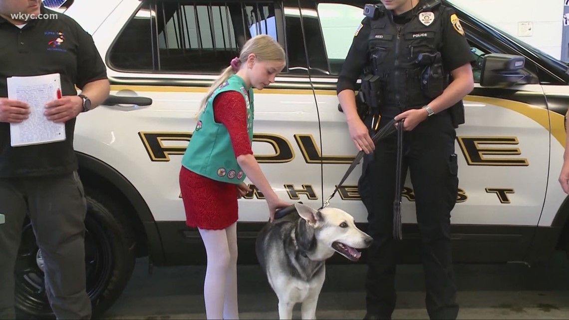 Show us something good: Amherst police help young girl find lost dog