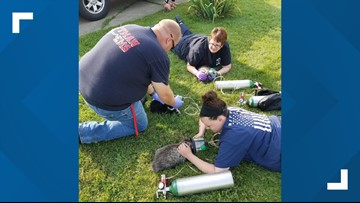 Rittman crews rescue several kittens from house fire
