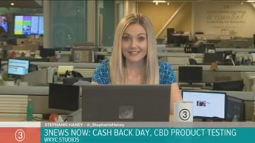 Watch | 3News Now with Stephanie Haney on Nov. 7