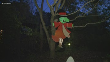 Akron's Boo at the Zoo kicks off this weekend