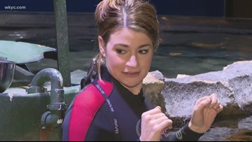 Face your fears: Maureen Kyle goes swimming with stingrays