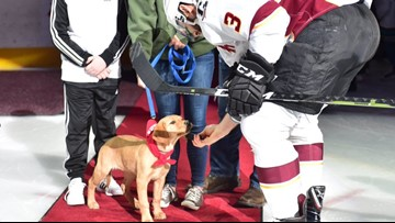 Roxy's big weekend as special guest at Lake Erie Monsters game