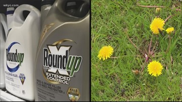 Debate continues over the safety of weed killers