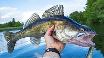Cleveland Metroparks, Cleveland Fishing Company announce partnership