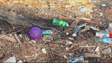 Lake Erie contains more than just water: Experts notice hike in plastic contamination