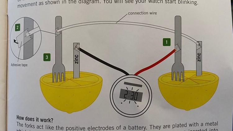 Maureen Kyle lemon battery experiment