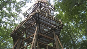 Extreme Week | WKYC's Sara Shookman climbs to great heights at Holden Arboretum